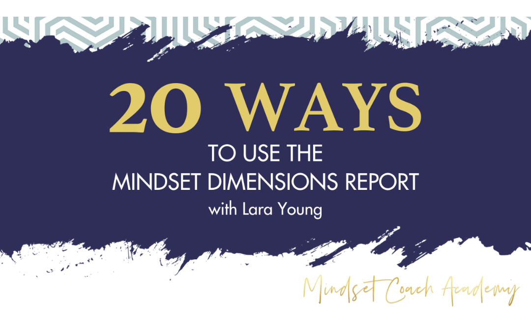 Episode 27: 20 Ways to Use the Mindset Dimensions Report